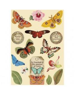 Silueta de madera de colores tamańo A5 - Amazonia mariposa