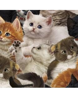 Tela gatos (25x110 cm.)