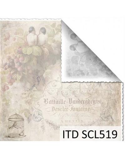 Papel scrap doble cara color y blanco/negro SCL519