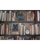Tela loneta 100x140 cm. motivo libreria