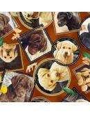 Tela perritos